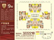 金河湾豪庭75--118平方米户型图
