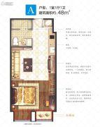 锦绣天地・青年城1室1厅1卫48平方米户型图