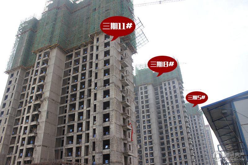 锦江城市花园三期11#、8#、5#楼