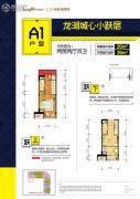 龙湖新壹城2室2厅2卫39平方米户型图