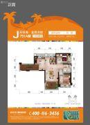 碧桂园珊瑚宫殿2室2厅1卫74平方米户型图