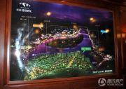 新湖香格里拉规划图