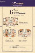 黄冈碧桂园5室2厅2卫249--251平方米户型图