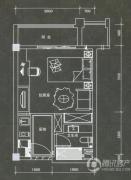 普君新城・华府1室1厅1卫42平方米户型图