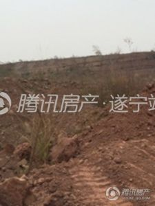 遂宁天鹅湖