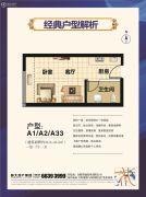 恒大帝景1室1厅1卫43--46平方米户型图