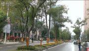百瑞景中央生活区六期实景图