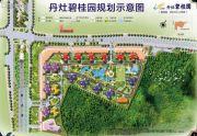 丹灶碧桂园规划图