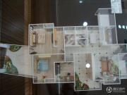 国电金海域4室2厅2卫141--144平方米户型图