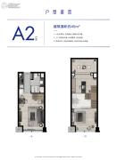 杭州泰禾中央广场1室1厅1卫45平方米户型图