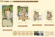 阳西温泉城595平方米户型图