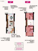 碧桂园克拉广场0室0厅0卫49平方米户型图