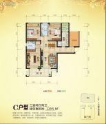 蜀汉大都会3室2厅2卫119平方米户型图
