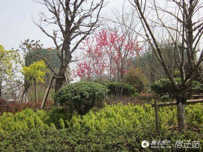 宏泰・尚阳城