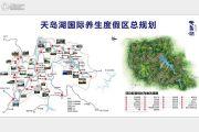天岛湖规划图