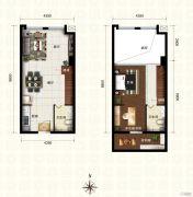 新都汇・二期1室2厅1卫55平方米户型图