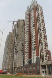 宗裕・国际鑫城