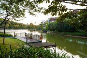 碧桂园御湖城实景图