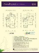 碧桂园山水桃园170平方米户型图