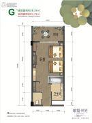 峨眉・时光1室1厅1卫38--54平方米户型图
