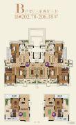 恒大帝景(备案名:聚亨景园)3室2厅3卫202--206平方米户型图