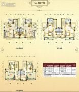 碧桂园・翡翠山224--225平方米户型图