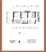 阳光100国际新城2室2厅1卫102平方米户型图