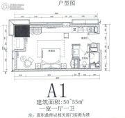 华远华中心1室1厅1卫50--55平方米户型图