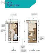 碧桂园奥斯汀1室1厅1卫35平方米户型图