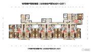 碧桂园・鼎龙湾0平方米户型图