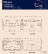碧桂园凤凰城6室2厅0卫483平方米户型图