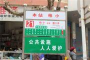 元嘉金江春天交通图
