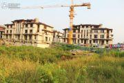 建业西城森林半岛实景图