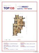 赞成乐山红叶4室2厅2卫135平方米户型图
