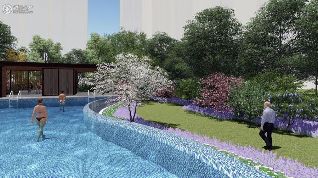 项目游泳池效果图