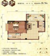 华厦丽景湾1室1厅1卫55平方米户型图