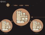 美丽湾3室1厅2卫100平方米户型图