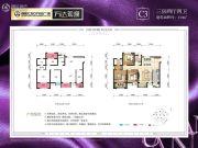 CBD万达广场万达观澜3室2厅2卫110平方米户型图
