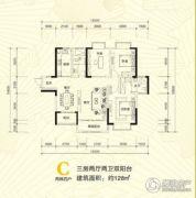 青龙湾田园国际新区3室2厅2卫128平方米户型图