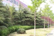 外海中央花园外景图