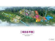 万达西双版纳国际度假区规划图
