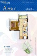 中泰天境花园1室1厅1卫50平方米户型图