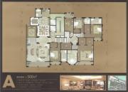 巨凝金水岸0室0厅0卫500平方米户型图