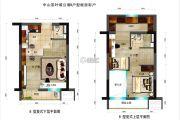 碧桂园・柏坦尼雅2室2厅2卫44平方米户型图