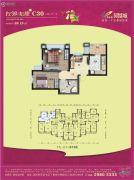 碧桂园凤凰城2室2厅1卫69平方米户型图