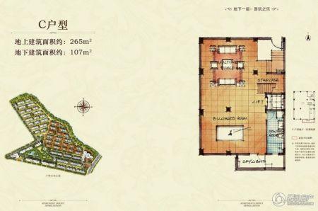 九龙仓碧堤半岛别墅c户型地下一层2厅1