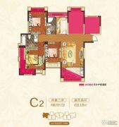 中大城3室2厅2卫118平方米户型图
