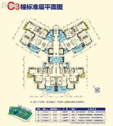 台山昌大昌广场3室2厅2卫139--149平方米户型图