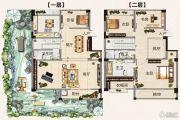 翡翠庄园244平方米户型图