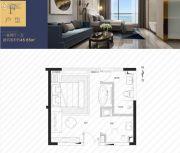 万丽骊宫1室2厅1卫45平方米户型图
